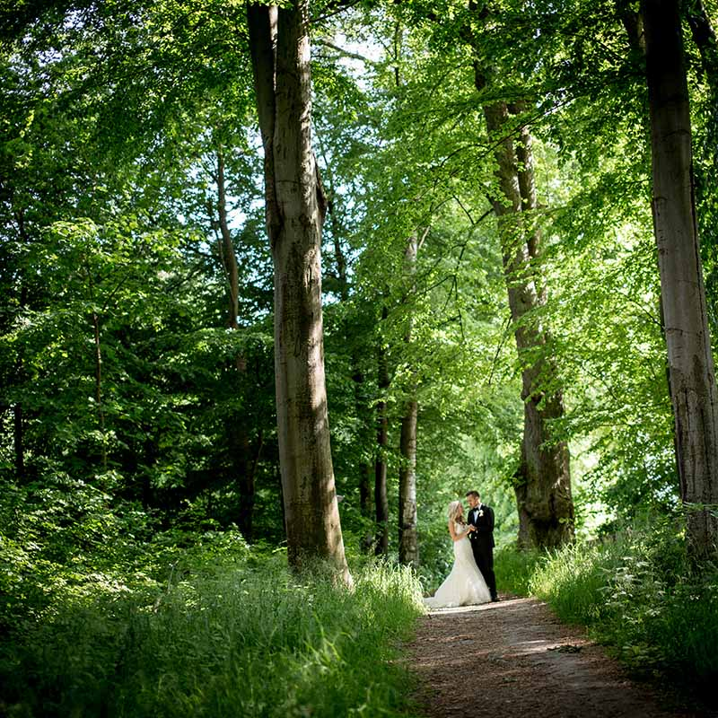 Wedding Photography All You Need To Know